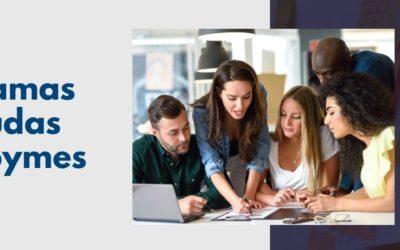 Programas de ayudas para pequeñas y medianas empresas (pymes) de la Comunidad de Madrid